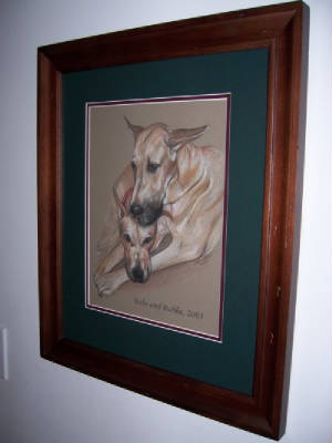 Great Danes Colored Pencil Portraits framed