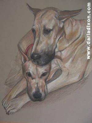 Great Danes Colored Pencil Pastel Look